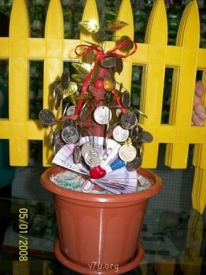 денежное дерево - 100_9601.JPG